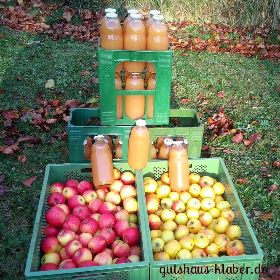 Apfelsaft Quittensaft Gutshaus Klaber Effektive Mikroorganismen